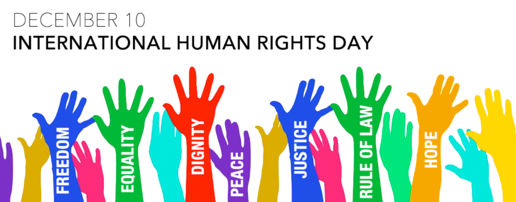 International Human Rights Day Alvis blog